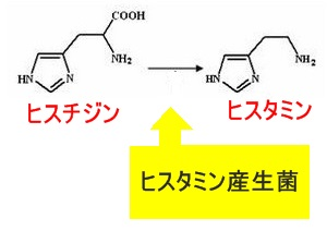 hisutamin2