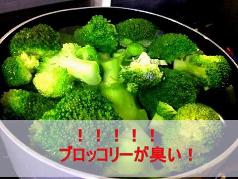 ブロッコリーが臭い!腐ってる?茹でた時に匂う原因と臭さを消す方法!