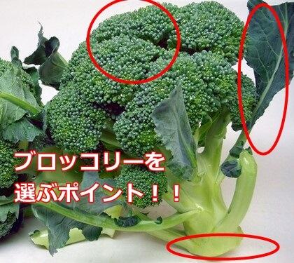 brocoli4