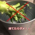どこまで食べれるブロッコリーの茎?捨てないで!実は美肌効果抜群