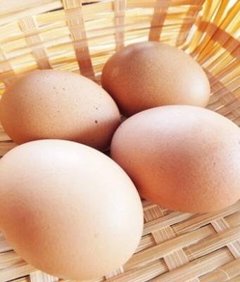 卵の新常識!「食べ過ぎでコレステロールが上がる」の嘘の理由