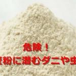 【危険】小麦粉の賞味期限切れは大丈夫?未開封でもダニの温床に!