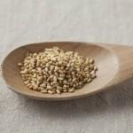 ゴマの食べ過ぎはダメ?過剰摂取で肥満やアレルギーの原因