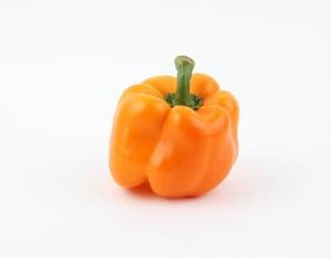 paprika05(1)