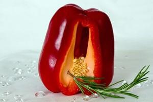 paprika06(1)