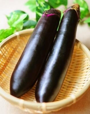 茄子の【黒い種や斑点】どこまで食べられる?腐った状態の見分け方